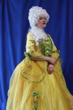 Карнавальный костюм. Фрейлина. Богатый костюм фрейлины из шикарной ткани с красивыми рукавами подойдет для театральных и тематических постановок на Новогоднем карнавале!